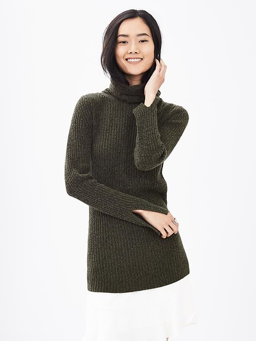 Banana Republic Ribbed Turtleneck Sweater Size L - Green/black