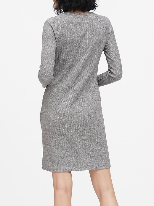 Luxespun Raglan T-Shirt Dress